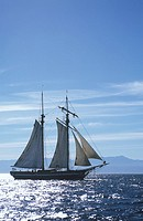 recreational sailing off Victoria waterfront, schooner, Vancouver Island, British Columbia, Canada