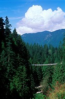 suspension bridge over Capilano Canyon, North Vancouver, British Columbia, Canada