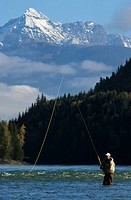 Flyfisherman on Skeena river, near Kitwanga, British Columbia, Canada