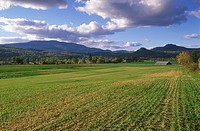 Farm along the Enderby Grindod road, British Columbia, Canada
