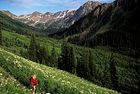 Woman hikes in mountain meadow, Pemberton, British Columbia, Canada