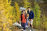 Father, son and daughter hiking in autumn larches at Sunshine Meadows, Mount Assiniboine Provincial Park, British Columbia, Canada