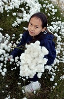 Girl picking Arctic Cotton, Tundra by Cambrige Bay Nunavut