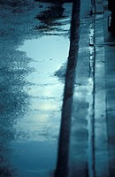 Rain Puddles in Gutter