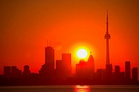 Skyline at Sunrise, Toronto, Ontario