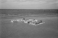 Women Sun Tanning, Grand Beach Provincial Park, Manitoba