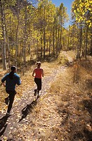 Man And Woman Jogging Through Woods