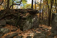 Beartown Rocks, Clear Creek State Park, Cook Forest, Western Pennsylvania, USA