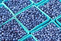 Blueberries For Sale At The Farmer´s Market
