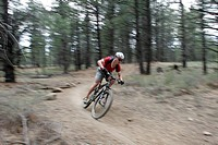 Mountain Biker Coming Around Curve