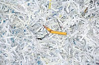Pile of shredded paper with broken pencil on top, overhead view