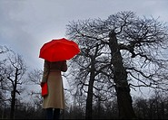 Woman with red umbrella and book looking at trees, rear view