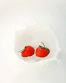 Two strawberries splashing into milk