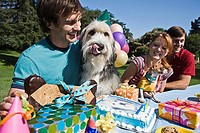 Dogs and people at birthday party