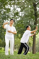 Senior man and woman practising tai chi in the park