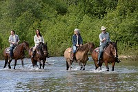 Four horse riders crossing river, forest in background