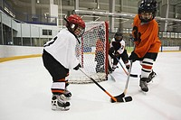 Young Hockey Players (thumbnail)