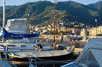 Boats at harbor, Rapallo, Genoa, Liguria, Italy