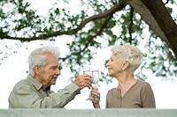 Senior couple making a toast with champagne outdoors