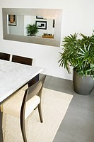 Houseplant and a dining table in a dining room