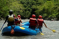 Rear view of five people rafting in a river
