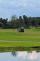 Golf cart in a golf course