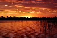 Sunset over the swamp, Okavango Delta, Botswana