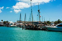 Boats moored at a harbor, Key West, Florida, USA