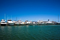 Boats docked at a harbor, Garrison Bight Marina, Key West, Florida, USA