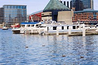 Boats moored at a harbor, National Aquarium, Inner Harbor, Baltimore, Maryland, USA