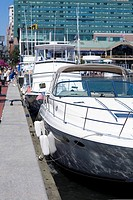 Motorboats moored at a harbor, Inner Harbor, Baltimore, Maryland, USA