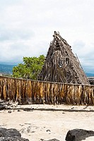 Tobacco leaves drying in front of a hut, Kona, Big Island, Hawaii Islands, USA