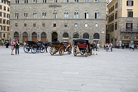 Horsedrawns in front of a building, Florence, Italy (thumbnail)