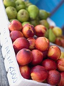 Close-up of fruits in fruit cartons, Providencia, Providencia y Santa Catalina (thumbnail)