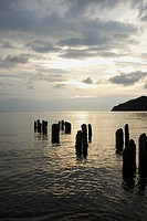 Wooden posts in the sea, Taganga Bay, Departamento De Magdalena, Colombia