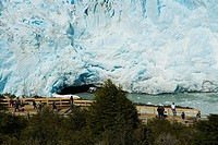 High angle view of tourists in front of a glacier, Moreno Glacier, Argentine Glaciers National Park, Lake Argentino, El Calafate, Patagonia, Argentina
