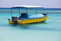 Tourboat in the sea, West Bay Beach, Roatan, Bay Islands, Honduras (thumbnail)