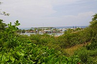 Buildings at a harbor, French Harbour, Roatan, Bay Islands, Honduras