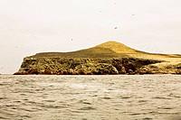 Birds flying over an island, Ballestas Islands, Paracas National Reserve, Paracas, Ica Region, Peru