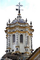 Storks nesting on church of San Juan Bautista in town of La Palma del Condado, Huelva, Spain