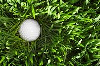 Golf ball in grass, overhead view