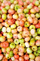 Acerola Malpighia glabra berries, full frame