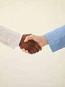 Two people shaking hands, close-up of hands