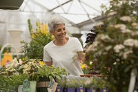 Smiling woman shopping at greenhouse