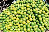 Brazil, Limes in wicker basket, close-up