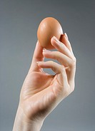 Close-up of woman´s hand holding chicken egg