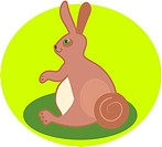 Illustration of a bunny rabbit (thumbnail)
