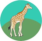 Illustration of a giraffe (thumbnail)