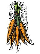 Fresh picked carrots (thumbnail)