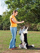 woman with Border Collie restrictions: Tierratgeber-Bücher / animal guidebooks